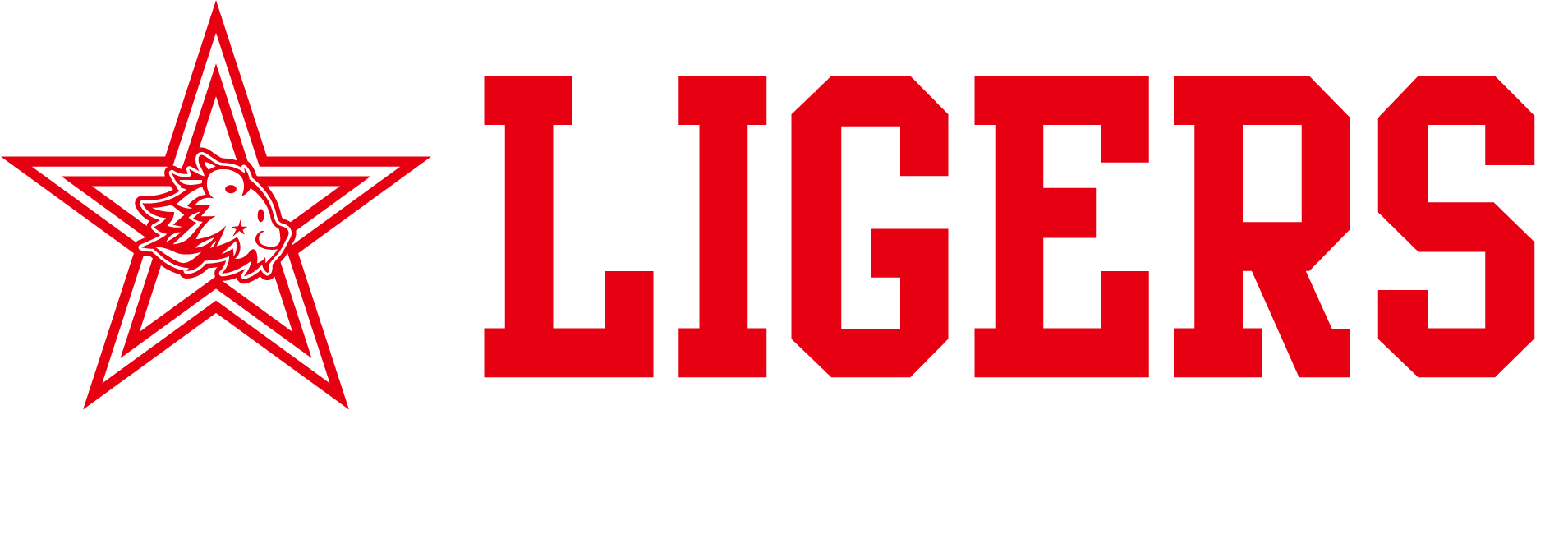Roppongi CheerLeading Team LIGERS